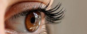 Eyes-1200x480